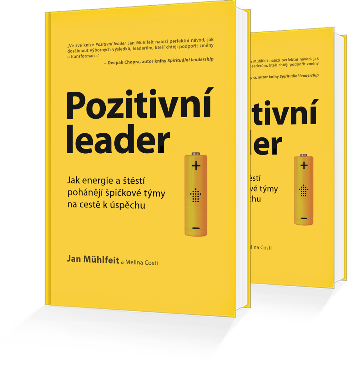 The positive leader book